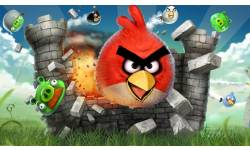 angry birds Screen 1