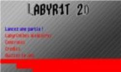 labyr1 2d