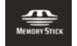 logo memoryStick 75x75