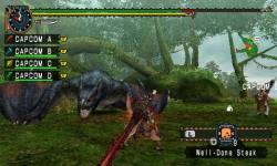 monster hunter freedom4