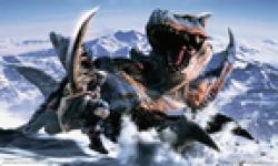 Monster Hunter vignette