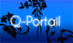 Q Portail Noël Vignette