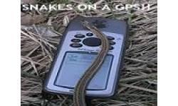 snakesgpsaa0