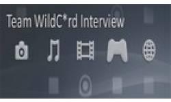 teamwildcard interview intro