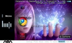 Vermine chrome un portail à l effigie du navigateur web de google0001